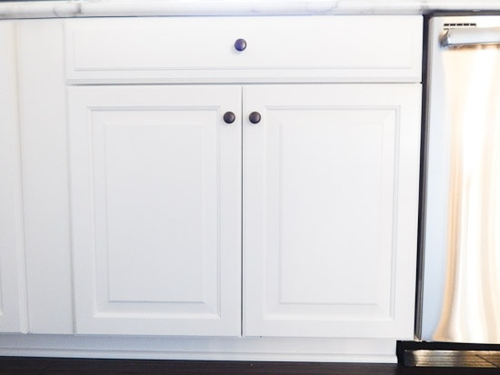 Organizing Under the Kitchen Sink L-20