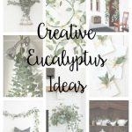 Creative Eucalyptus Ideas