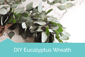 Eucalyptus_Wreath