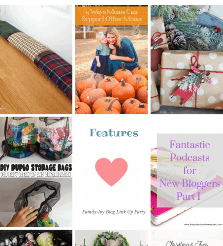Features from the Family Joy Blog Link Party #46. Great and creative ideas!