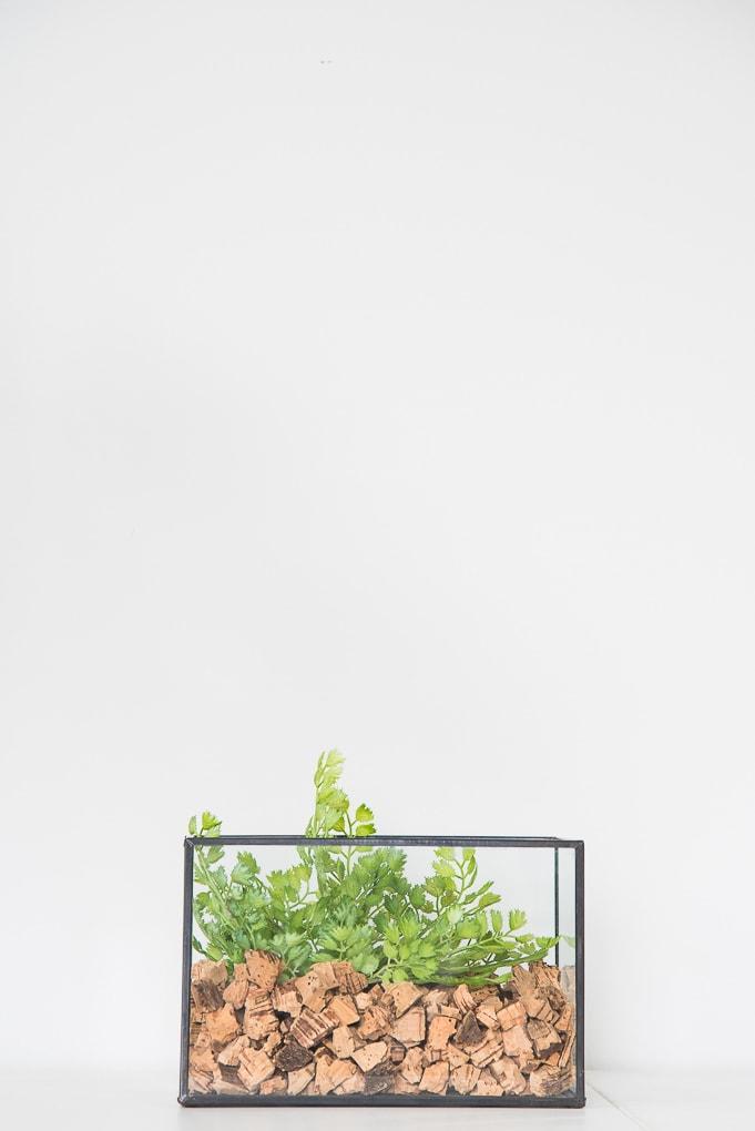 How to Make a Faux Greenery Terrarium. Easy tutorial for a DIY terrarium for your home decor.