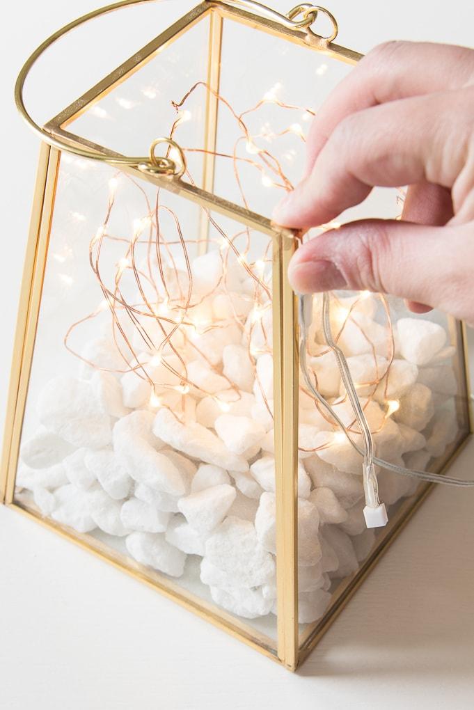gold lantern terrarium with fairy lights wire