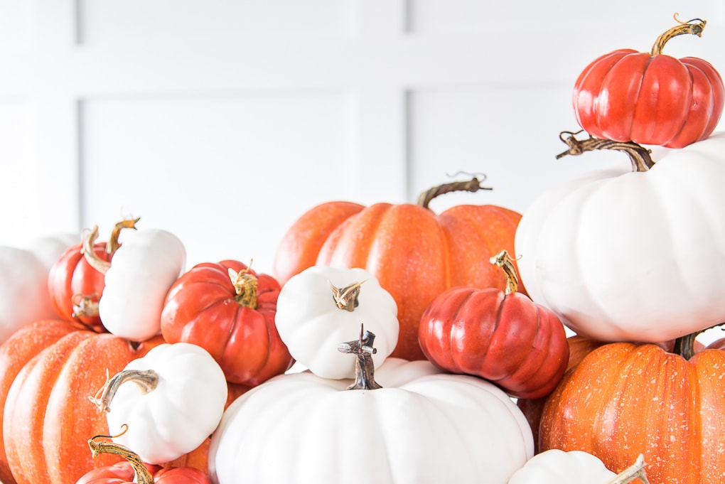 pile of orange and white pumpkins