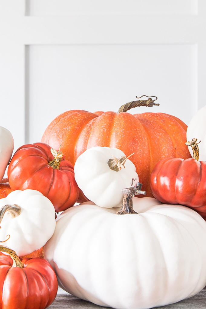 close up of white and orange pumpkins