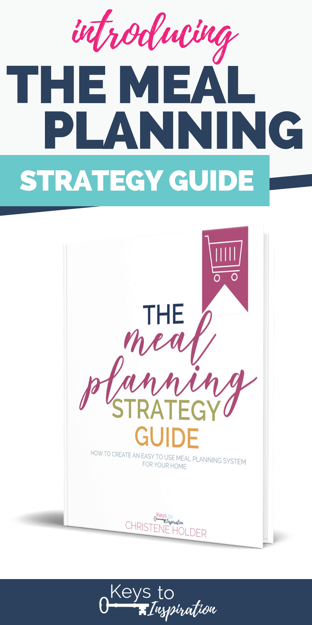 the meal planning strategy guide introduction image