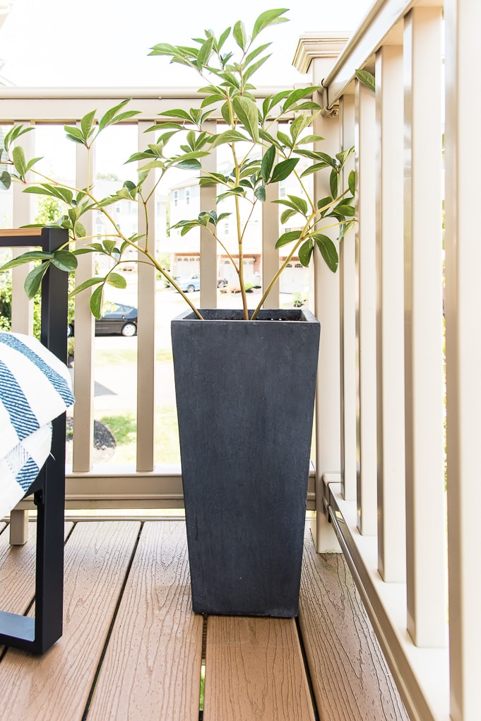 tall black outdoor planter on porch