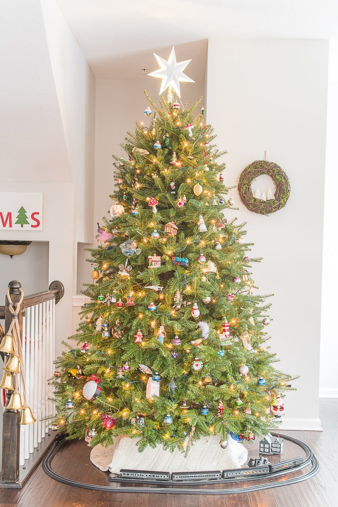 Traditional fresh Christmas tree in living room