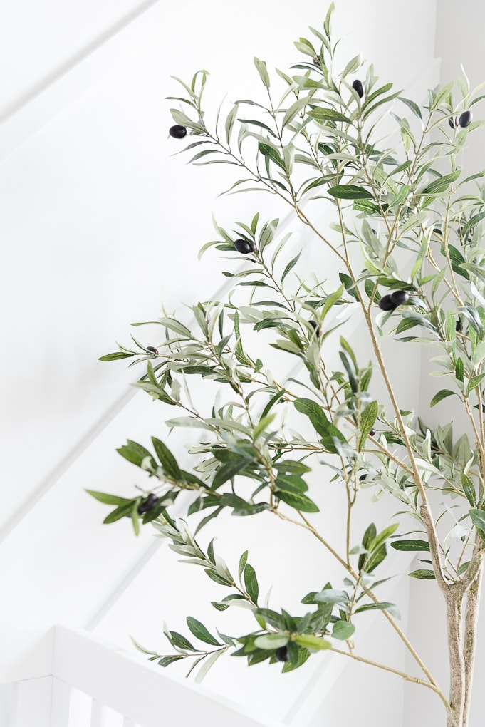 faux olive tree branches against a modern white accent wall