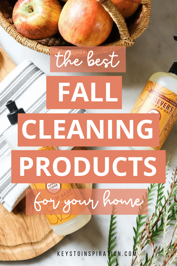 the best fall cleaning products for your home