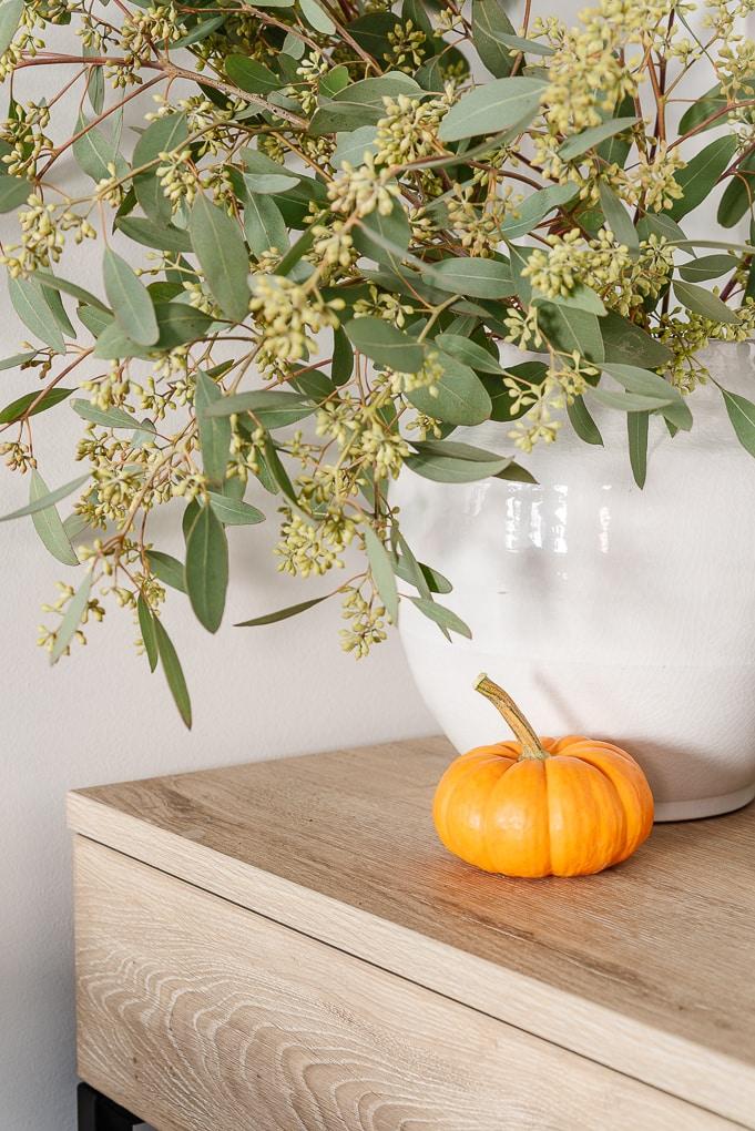 small orange pumpkin next to seeded eucalyptus