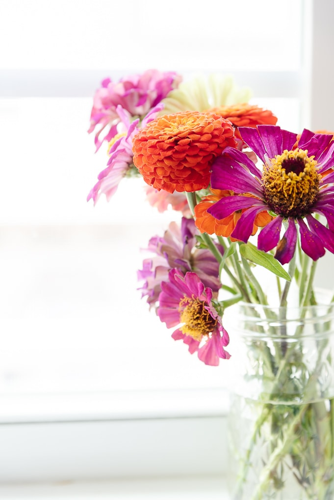 wildflower zinnias in glass vase on kitchen window sill